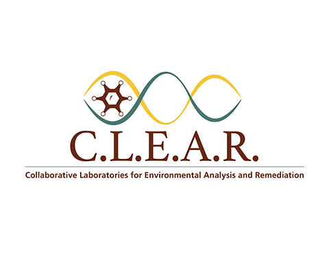 CLEAR Logo Only